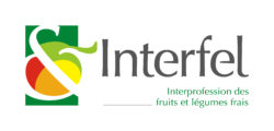 INTERFEL 2018